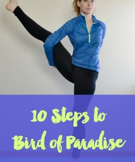 10 steps to follow to help you get into the Bird of Paradise yoga pose